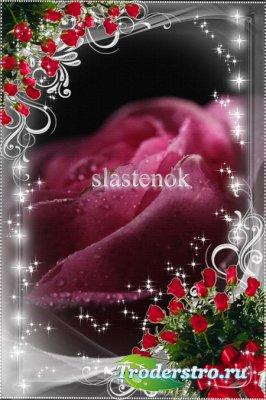 Рамка для фотошопа - Серебром блестят лезвия розы