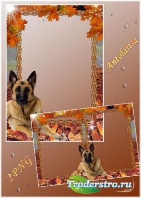 Рамки для фото - Осенняя прогулка