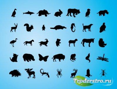 Силуэты зверей и бабочек (Animals Vector silhouettes)