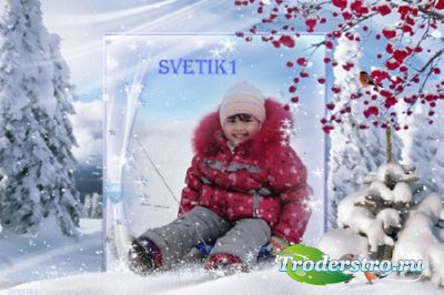 Зимняя рамка для фото - Снегири и рябина