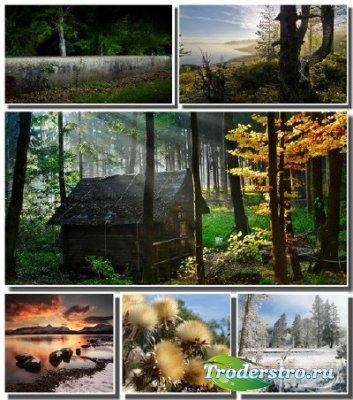 Качественные обои с прекрасной природой 2012 (Часть 1)