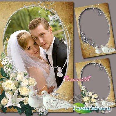 Свадебная рамка для фотошоп - Голубки