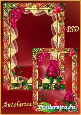 Рамка для фото - Алые розы