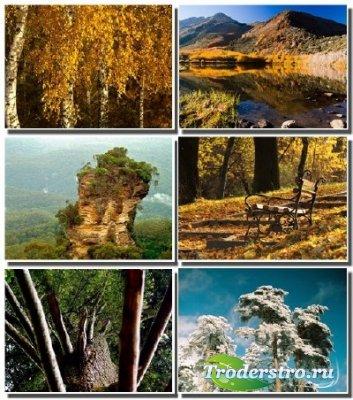 Обои - Завораживающие красоты природы (Часть 21)