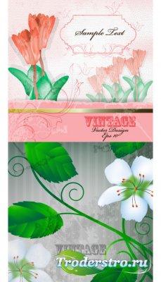 Винтажные цветочные фоны с зелеными листьями (Вектор)