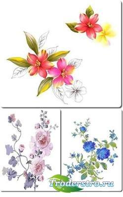 Цветы - три многослойных PSD