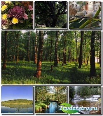 Качественные обои с прекрасной природой 2012 (Часть 3)