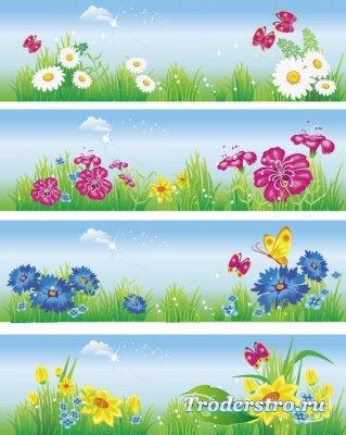 Летние фоны - Ромашки бабочки (Вектор)