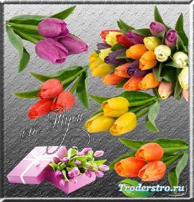 Клипарт – Дарите женщинам цветы необычайной красоты