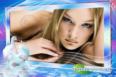 Фоторамка - Белая лебедь