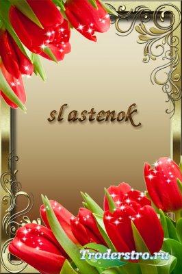 Весенняя рамка для фото - Тюльпаны со звездочками