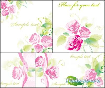 Белые фоны - Розы с листьями (Вектор)
