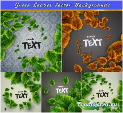 Свежие зеленые листья (Вектор)