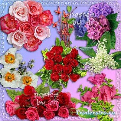 Цветочный клипарт к 8 Марта