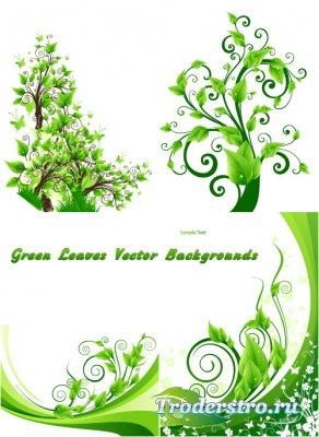 Фоны с свежими зелеными листьями и ветками (Вектор)