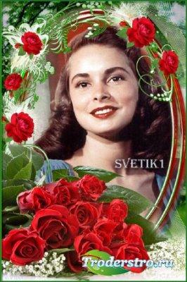 Цветочная рамка для фото - Алые розы