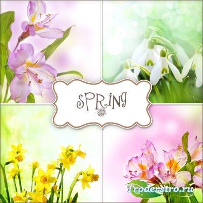 Фоны - Наступила Весна
