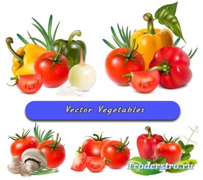 Овощи помидоры, перец, лук, горох, грибы (Вектор)