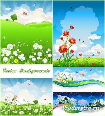 Летние фоны с одуванчиками ромашками бабочками (Вектор)