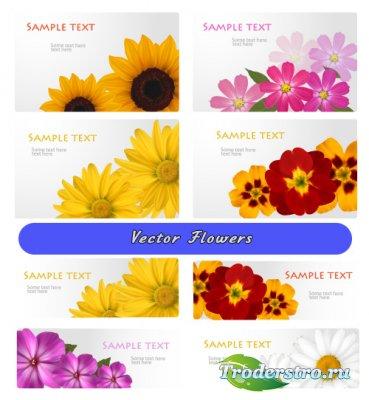 Желтые розовые цветы ромашки подсолнухи (Вектор)
