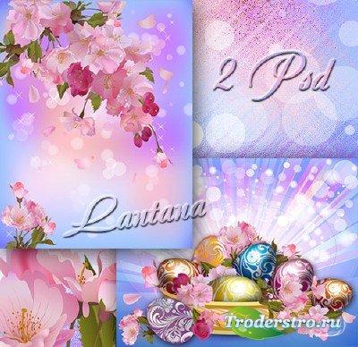 PSD исходники для фотошопа - Любви небесной яблоневый цвет