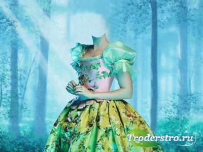 Шаблон для монтажа в Photoshop - Сказочный лес