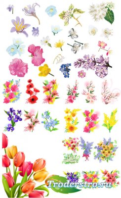 Коллекция весенние букеты цветов (Вектор)