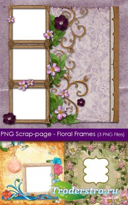 PNG Скрап-странички (рамки) - Цветочные
