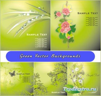 Светло зеленые фоны с цветами ветками