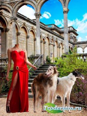 Шаблон для фотошопа – Женщина с собаками