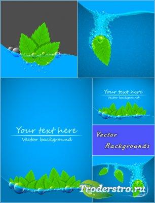 Листья в воде с пузырьками (Вектор)