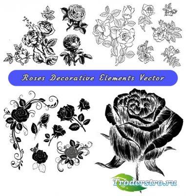 Декоративные элементы дизайна из роз (Вектор)
