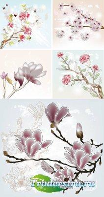 Весенние цветение белых цветов на ветках дерева (Вектор)