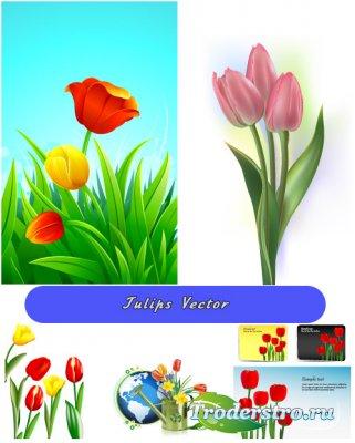Весенний букет тюльпанов в векторе