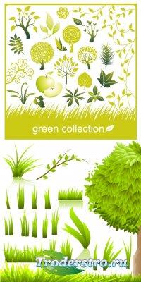 Зеленые ветки и травы (Вектор)