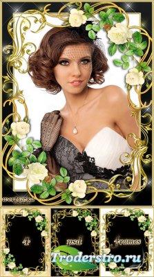 Цветочная рамка - Белые розы в золотом сиянии