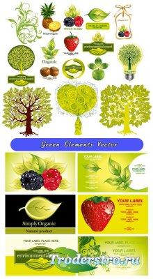 Зеленые карточки с ягодами листья, орехи, кокосы (Вектор)