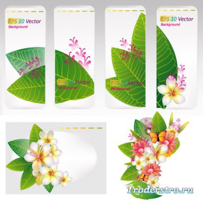 Дизайн фонов с большими зелеными листьями (Вектор)