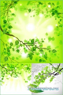 Ветки деревьев с свежими листьями (Вектор)