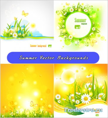 Желтые летние фоны с полевыми цветами (Вектор)