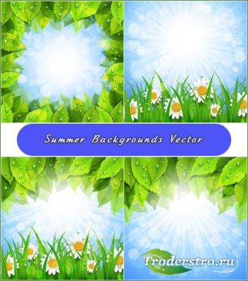 Летние лучи с рамкой из листьев с каплями воды (Вектор)