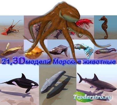 3D модели Морские животные рыбы