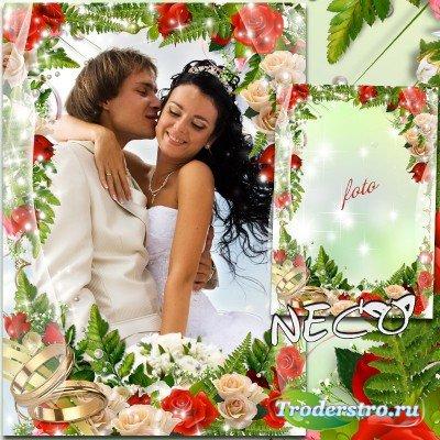 Роскошная свадебная рамка с красными и белыми розами - Наша свадьба
