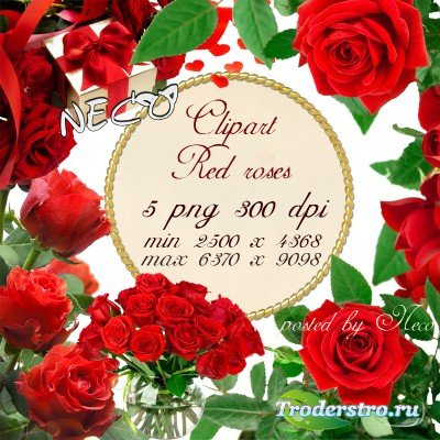 Clipart red roses 2 - Клипарт красные розы 2 PNG