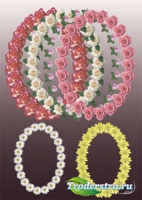 Клипарт - Овальные рамки с цветами