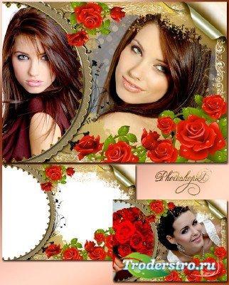 Романтическая рамка для фотошопа – Красные розы, словно гроздья из цветного ...
