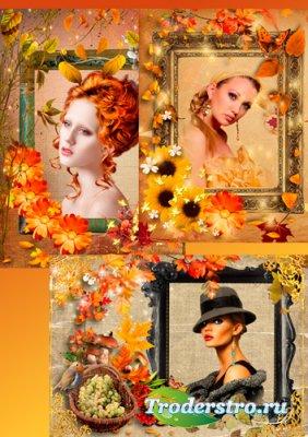 Рамки для фото – Осень золотая наступила