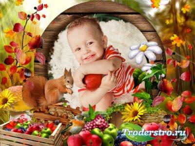 Фоторамка - Осенние запасы