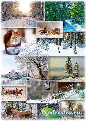 Красивые зимние пейзажи – Снега зимы покрыли холмы