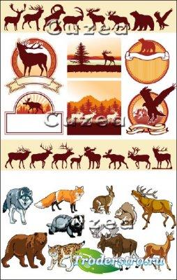 Обитатели дикой природы - птицы и животные в векторе